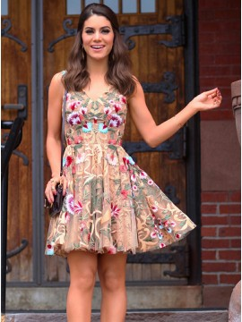 A-Line V-Neck Short Champagne Tulle Homecoming Dress with Floral Lace
