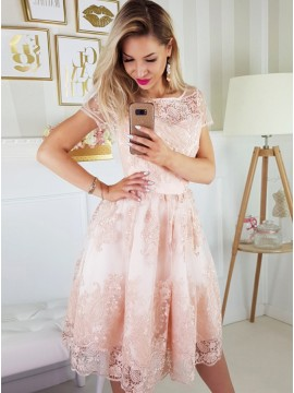 A-Line Round Neck Short Sleeves Knee-Length Pink Homecoming Dress with Appliques